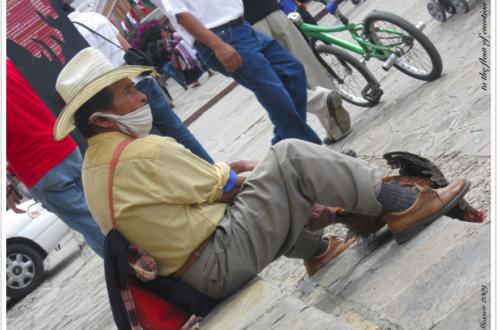 Article : Un jour, une grippe, au Mexique, en 2009